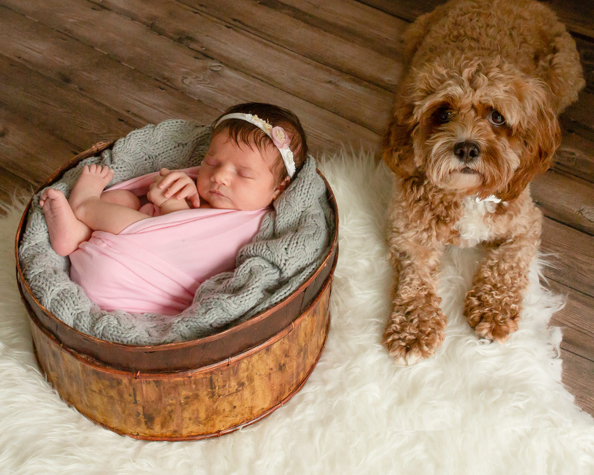 new baby photography horsham